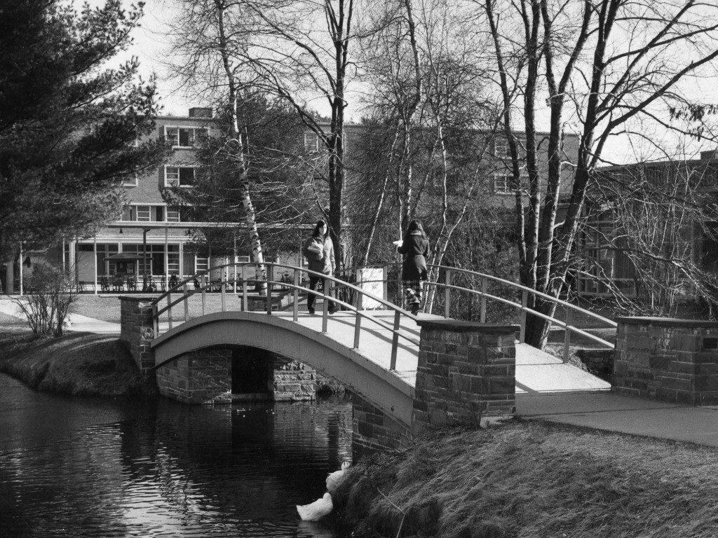 Peacock Pond Bridge
